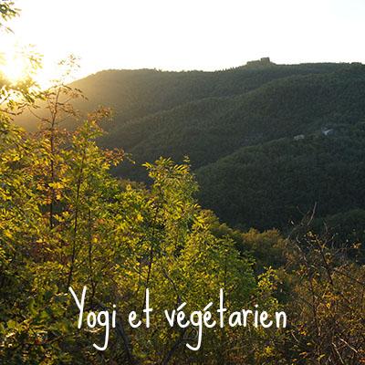 yogi et végétarien