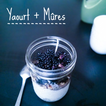 yaourt mures
